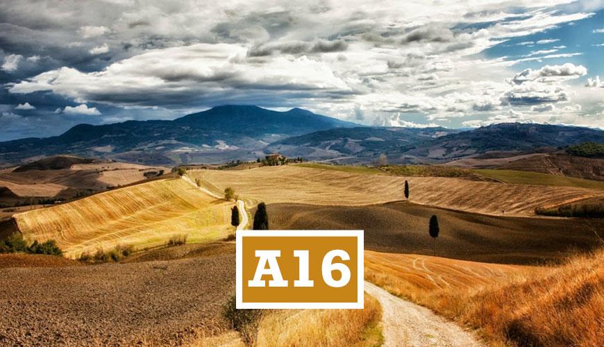 A16EDUMA