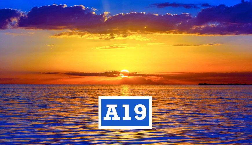 A19EDUMA