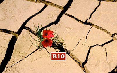 B10 | RACKET PSICOLOGICO: la prigione dell'autostima | 25 – 27 settembre | Armeno (NO)