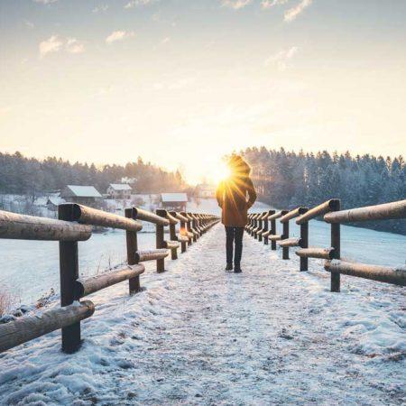 C1 online | Germogli di consapevolezza | 6 gennaio 2021