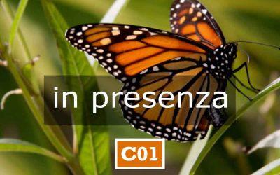C01 | APPARTENENZA E IDENTITÀ | 14-16 maggio | Armeno (NO)