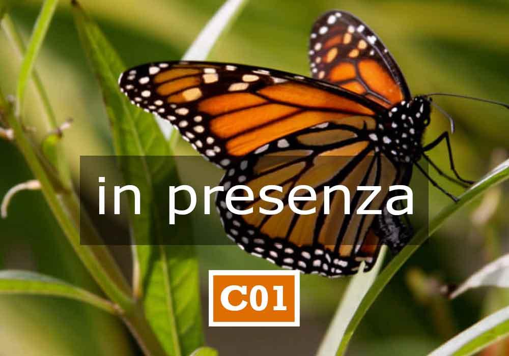 Unialeph-Seminari-C01-ONLINE-APPARTENENZA-E-IDENTITA-In-presenza